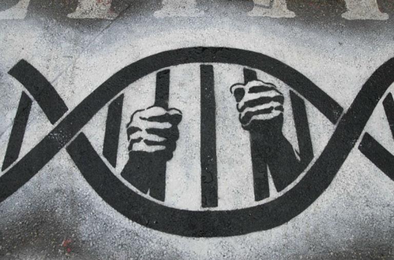 """Diálogo con el Lic. Martín Lema: """"Después de veinte años, no se demostró que los OGM tengan impactos contra la salud… El mundo sigue andando aunque haya gente mal informada"""" - Andén 71"""