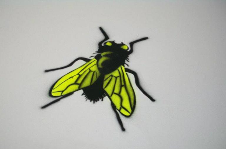 De gigantes, fantasmas, hormigas y mosquitos - Exclusivo Web