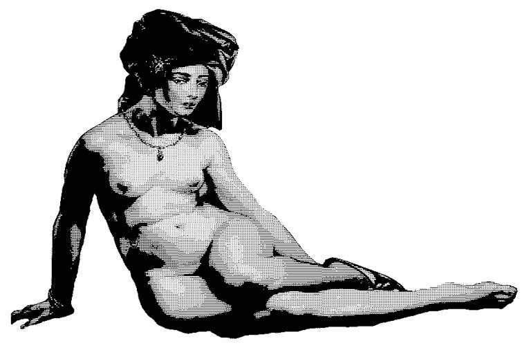 """""""Es un mahometano el que se desliza"""": erotismo y pornografía en la poesía clásica árabe - Andén 80"""