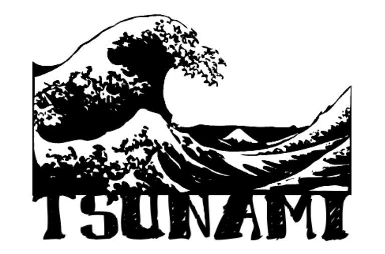 Tsunami de chanes - Andén 81